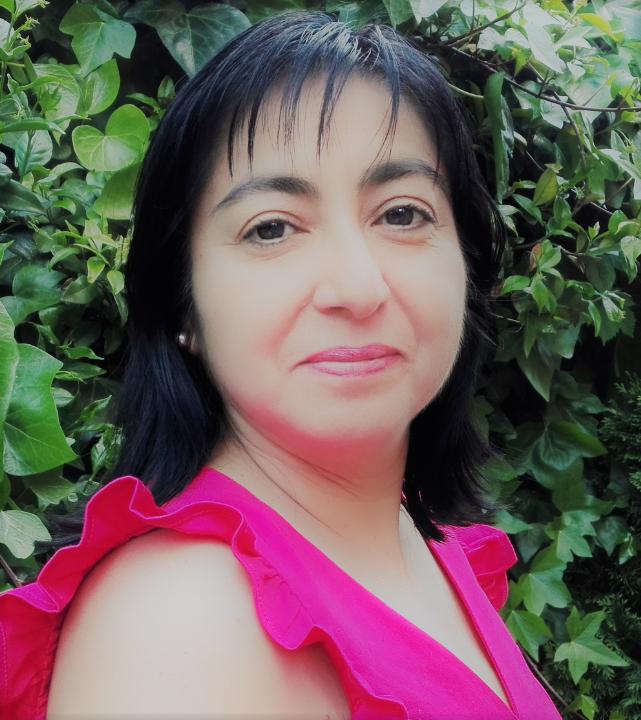 danith valles author