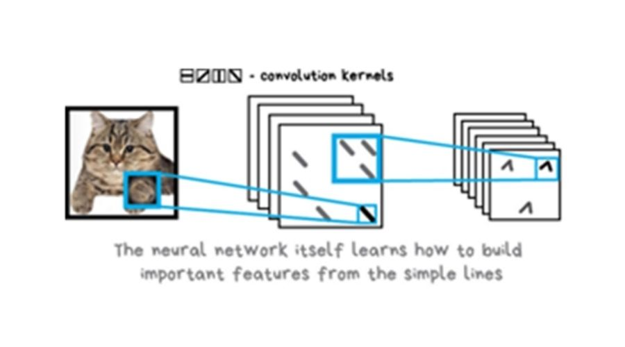 Learning of the neural network